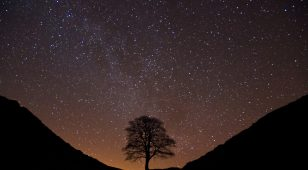 The stars over Sycamore Gap by Cain Scrimgeour.